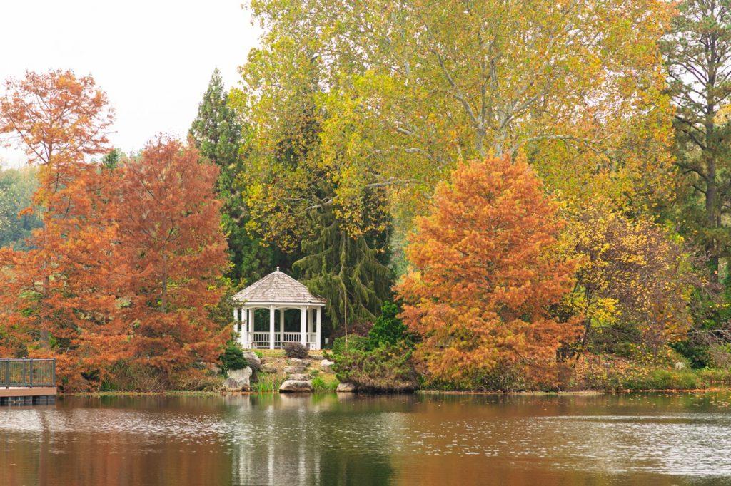 Autumn at Lewis Ginter