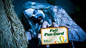 bg fall fun card